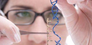генномодифициране