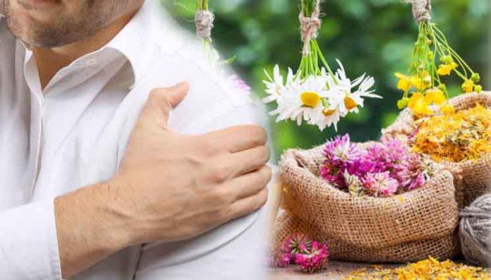 хомеопати