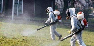 кърлежи и комари