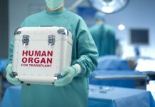 трансплантации