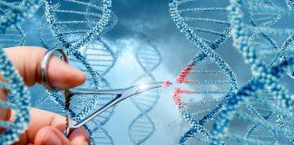 генна терапия