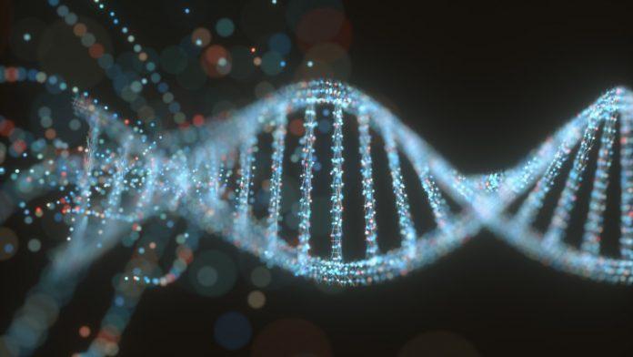 неандерталски ген